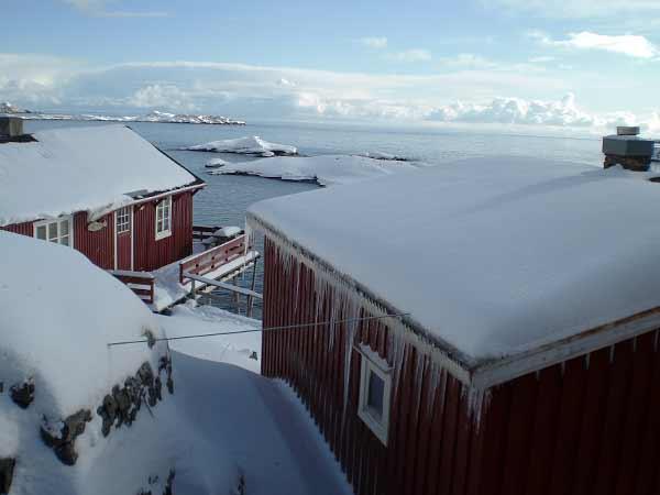 Å, Lofoten Islands - Feeling cold?