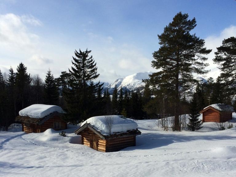RaulandVH_Vinter2015