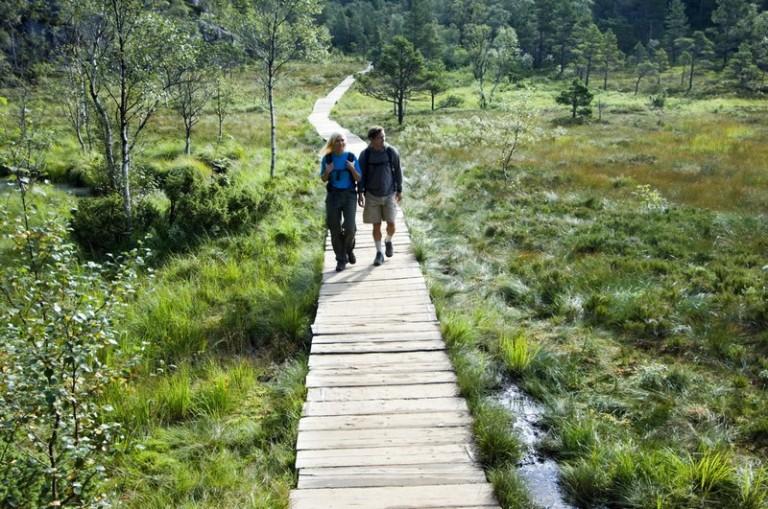 Bilde 2 Preikestolen trail foto Terje Rakke_Nordic Life_regionstavanger.com